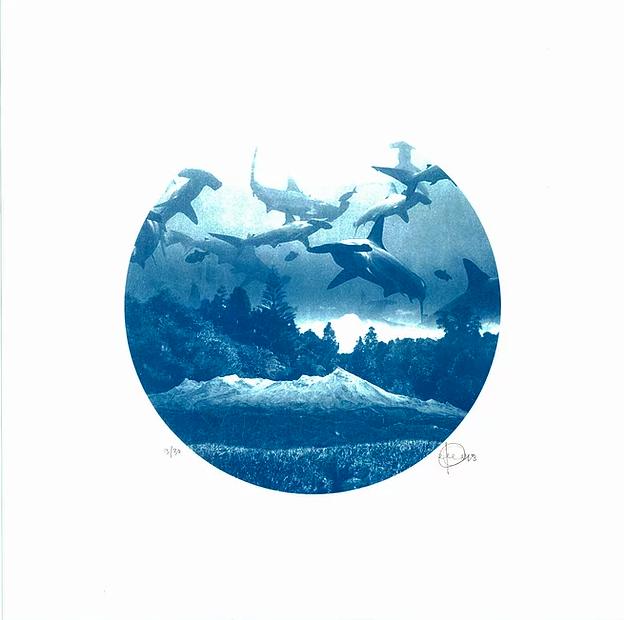 <Craig Keenan> <Blue> <Sharks> <Underwater> <Darklight Art>
